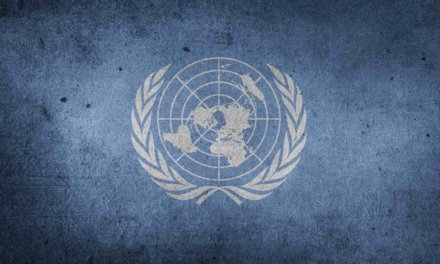 Understanding the United Nations in the World