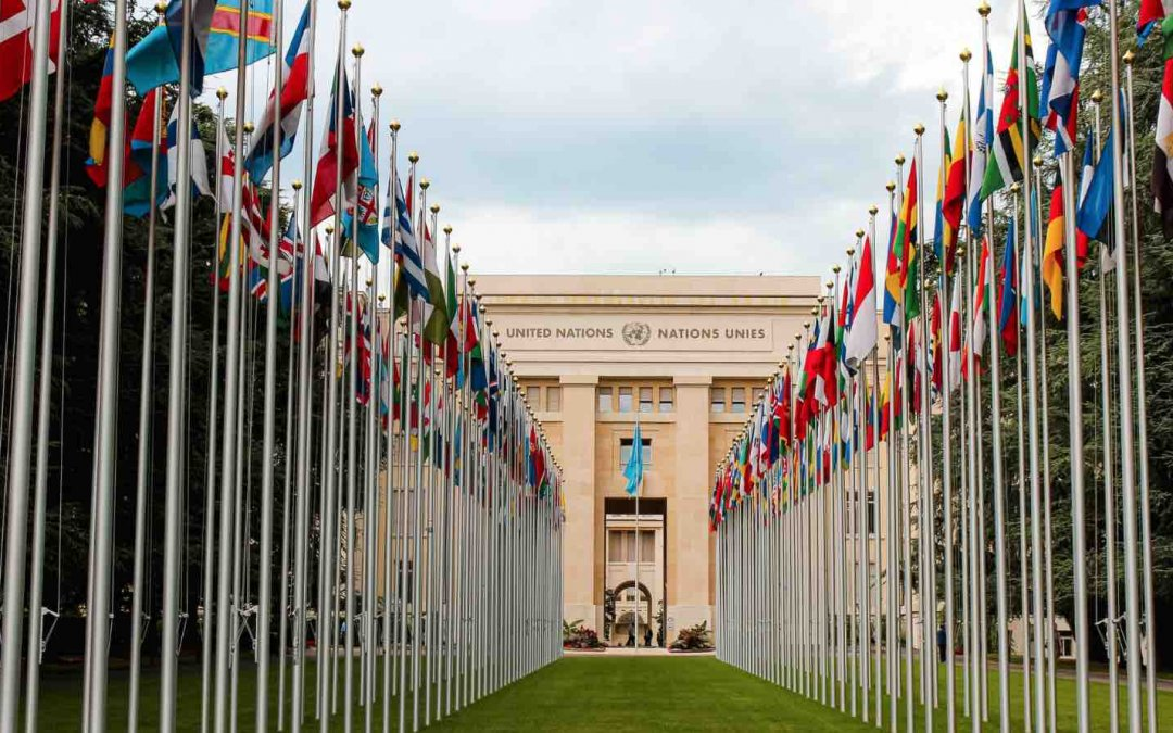 Open Now: The United Nations Young Professionals Programme